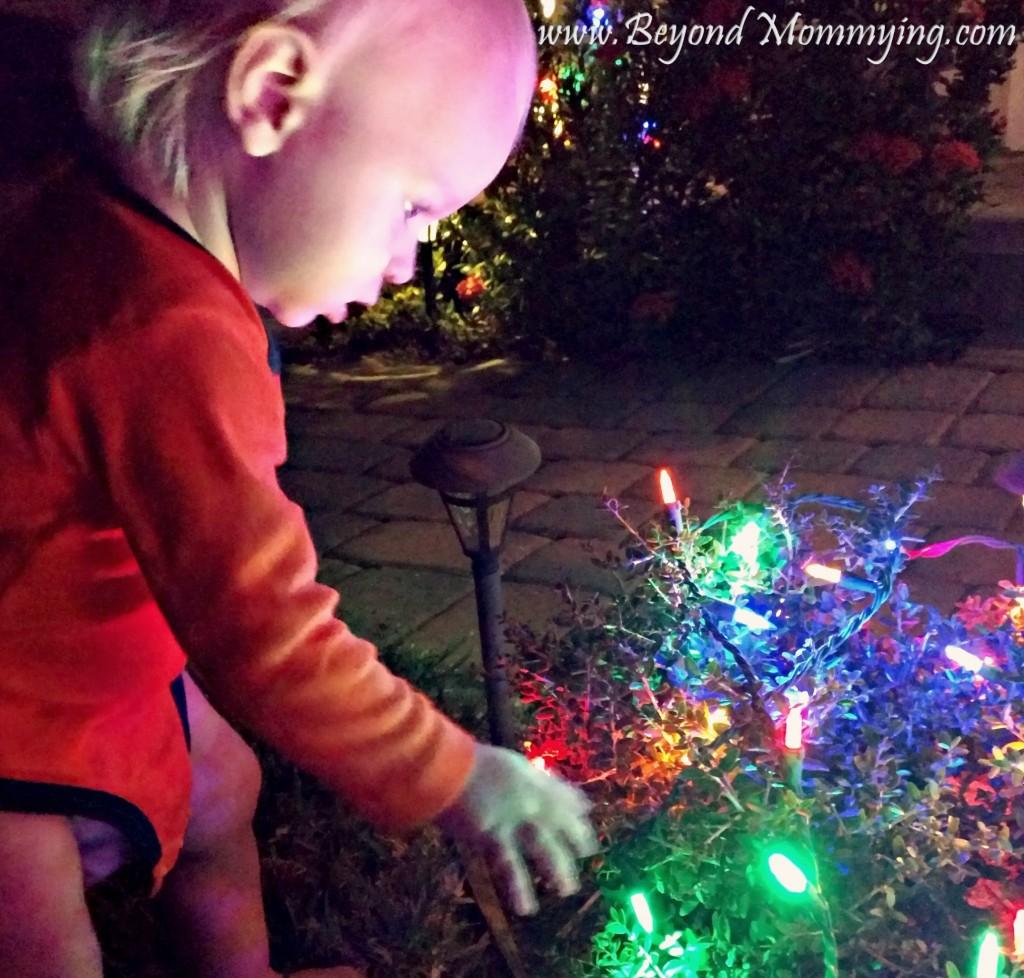p-xmas-lights