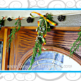 Create this easy and festive DIY Pine Garland using pine cones and fresh evergreen fronds from the yard and fall or holiday inspired ribbon.
